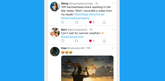 Stories are coming to Twitter in a format called 'Fleets'