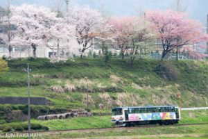 花が咲き乱れる長良川鉄道