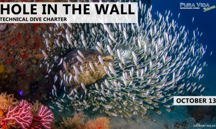 OCT 13: HOLE IN THE WALL TEC CHARTER