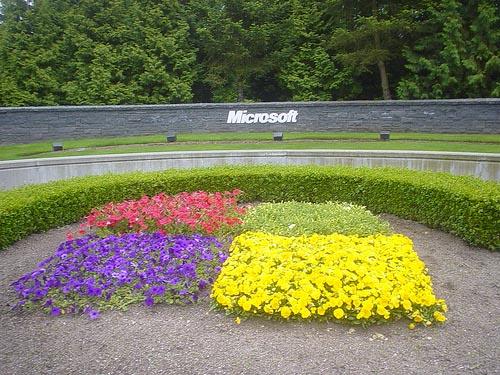 microsoft windows 15 years celebrations