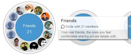 google+ choose circle