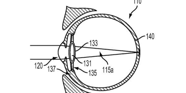 Google Bionic Vision Lens