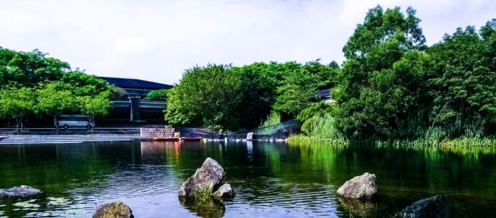 China Sea Lake Pond Water Surface Nature Stones Forest Trees Comp
