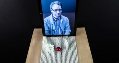 Physical Functional Telepresence Demo MIT Video