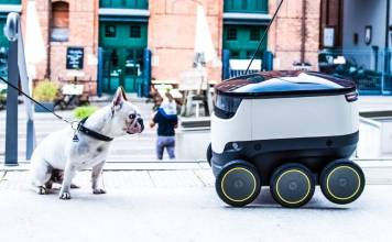 Starship Technologies Delivery Bot Wheels Rolling Parcel Germany Dog Sitting Front of Robot Camera View Finder Six Wheeled Palo Alto