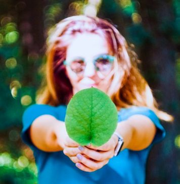 Greenly partners with Tink to create a European standard for tracking carbon footprint through your bank