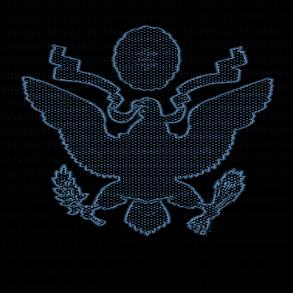 usa-government.png