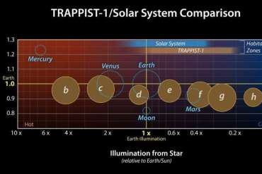 The seven rocky planets of TRAPPIST-1 seem to have very similar compositions