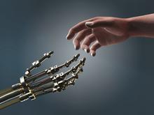 AI, Automation, and Tech Jobs