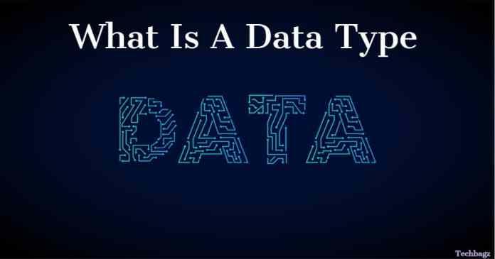 Data टाइप या डाटा स्ट्रक्चर-Data Type In Hindi