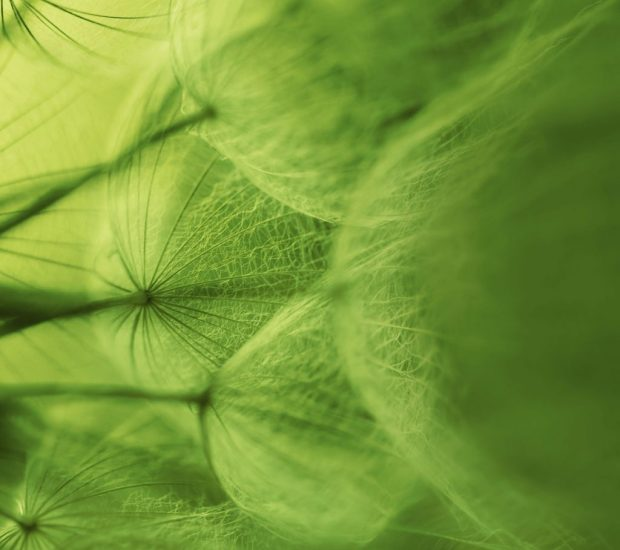 Xperia-Z2-wallpapers (13)