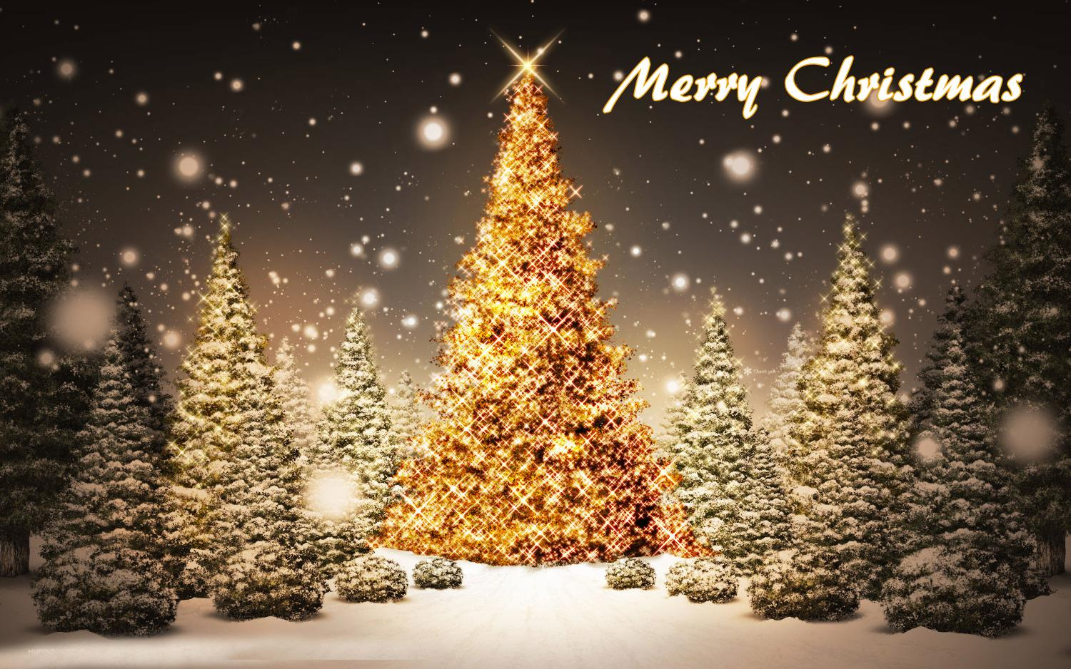 Merry Christmas tree free download wallpaper - 2017
