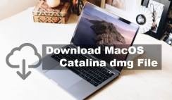 Download MacOS Catalina dmg File