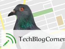 "Strong Impact of Google ""Pigeon"" Updates On Local Search Algorithm"