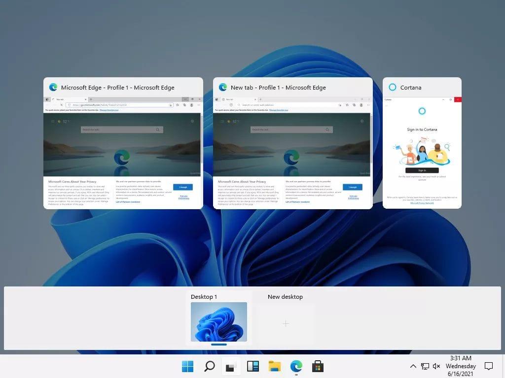 Windows 11 Exposed
