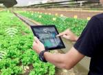 A Guide To Agriculture Process Tracking Solution For Agricultural Businesses
