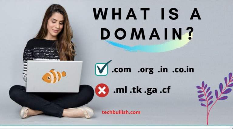what is a domain