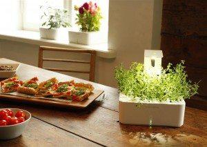 Smart-Herb-Garden1-Medium