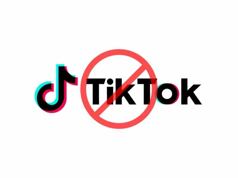 Google Remove Tik Tok App from Google Play Store