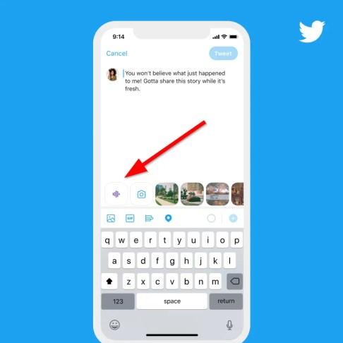 Open Tweet Composer Window for Voice Tweet Option