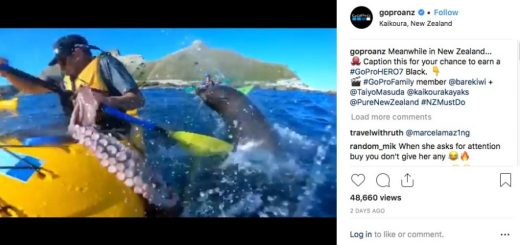 GoPro HERO7 Black_Kyle Mulinger slapped by Octopus