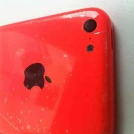 iPhone 5C (7)