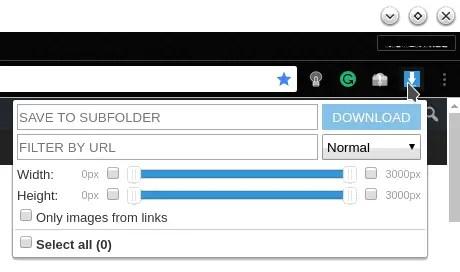 image downloader interface