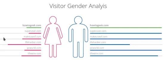 visitor gender analysis