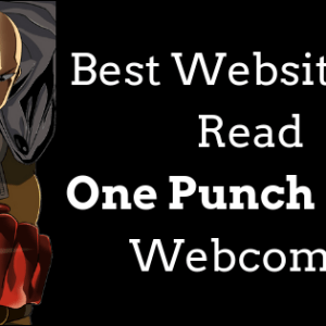 One Punch Man Webcomic