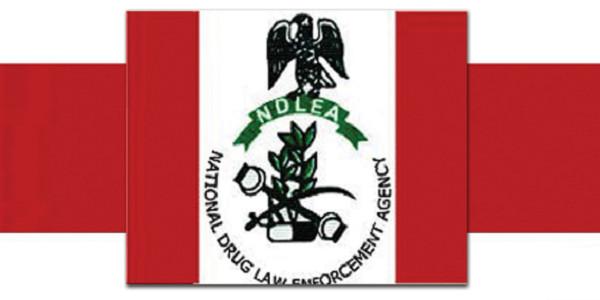 ndlea-recruitment-2019
