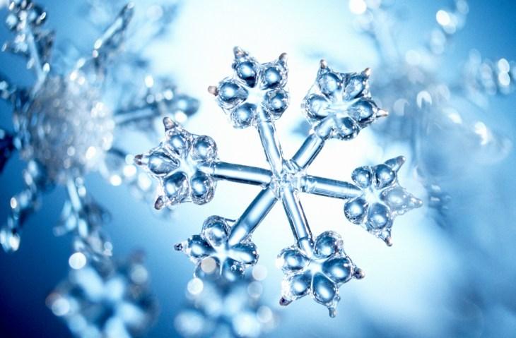 snowflake rakes in 100