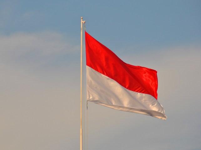 Three Indonesian tech unicorns unite to back digital insurance startup