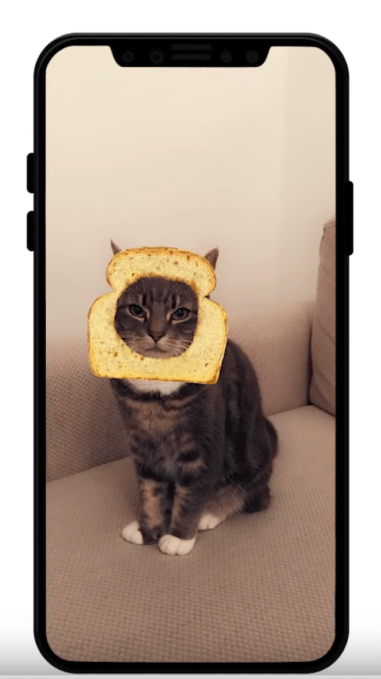 snapchat now has cat
