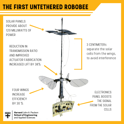 robobee chart