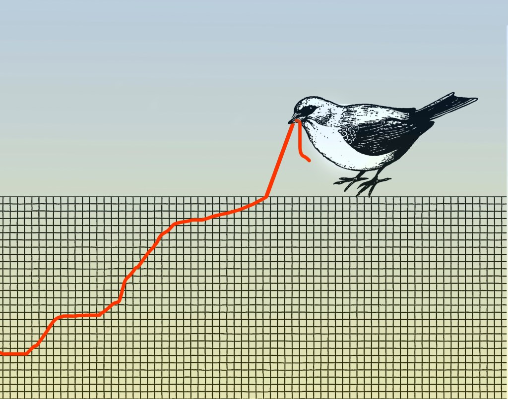 Conceptual illustration of a bird pulling at a graph that resembles a worm depicting struggle.