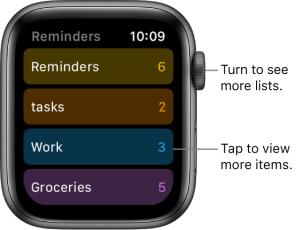 Apple Series 5 Reminder app