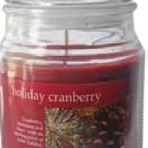 Empire Home Holiday Cranberry 18oz Candle