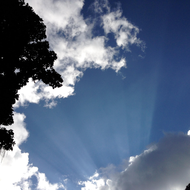 tree top on left, clouds, blue sky overhead
