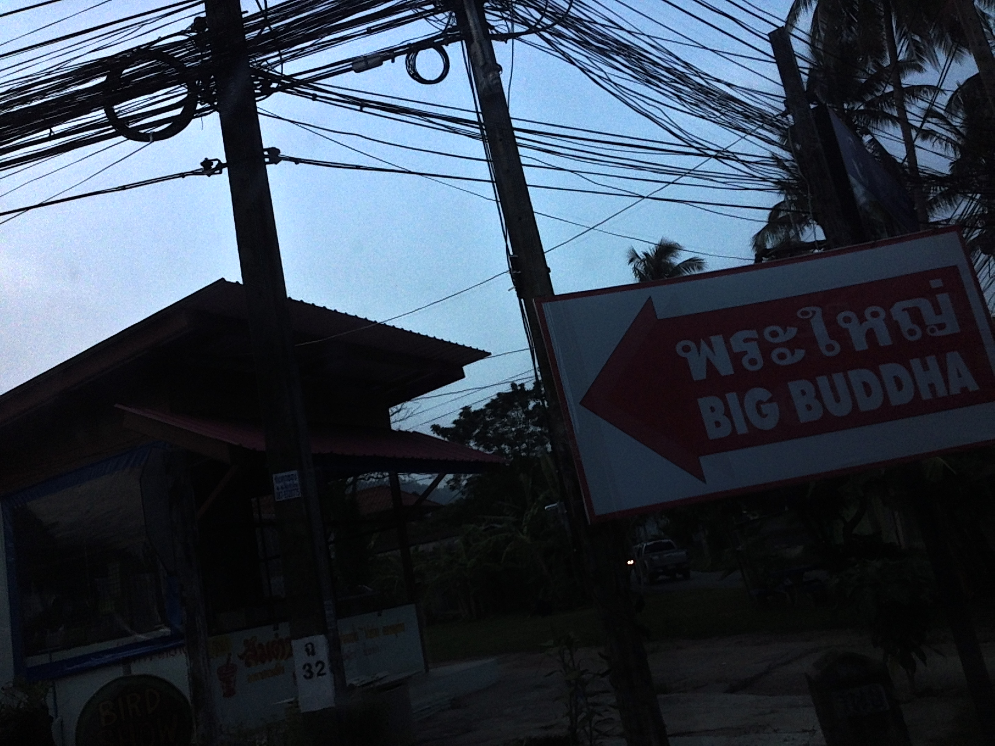 Electric poles with wires, and on the right a white sign with red lettering and a big red arrow pointing to the left. The arrow says Big Buddha.