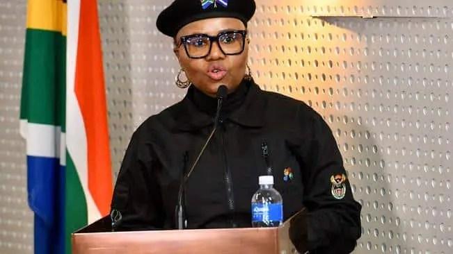 Social Development Minister Lindiwe Zulu