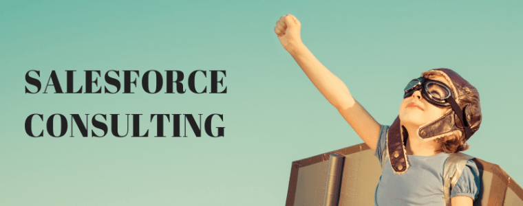 Salesforce Consulting Services - Techforce Services