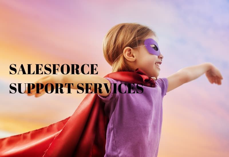 Salesforce Support Services - Techforce Services