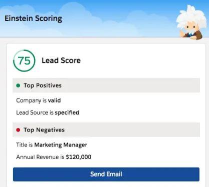 Einstein Lead Score - Techforce Services