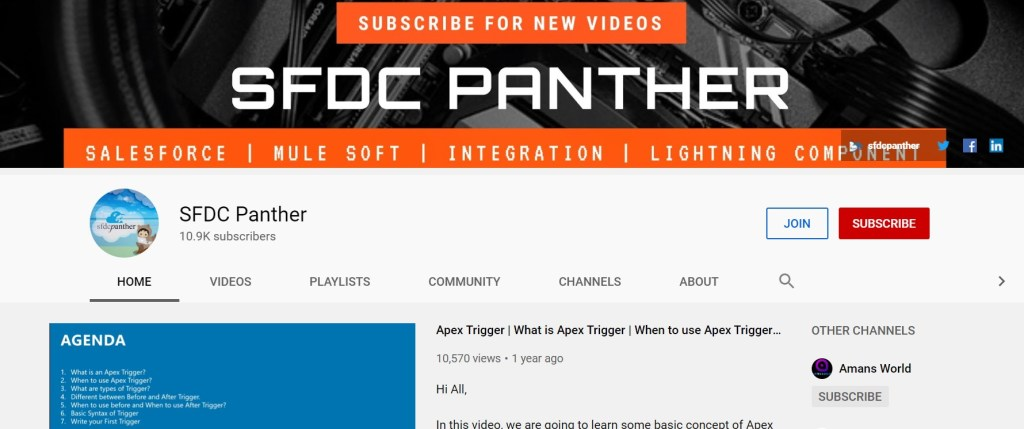 SFDC Panther youtube channel