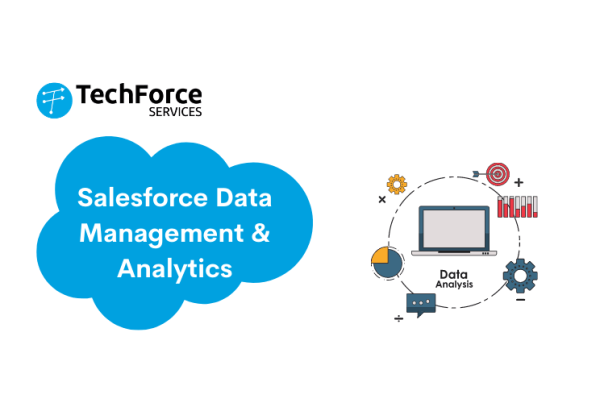 Salesforce Data Management & Analytics