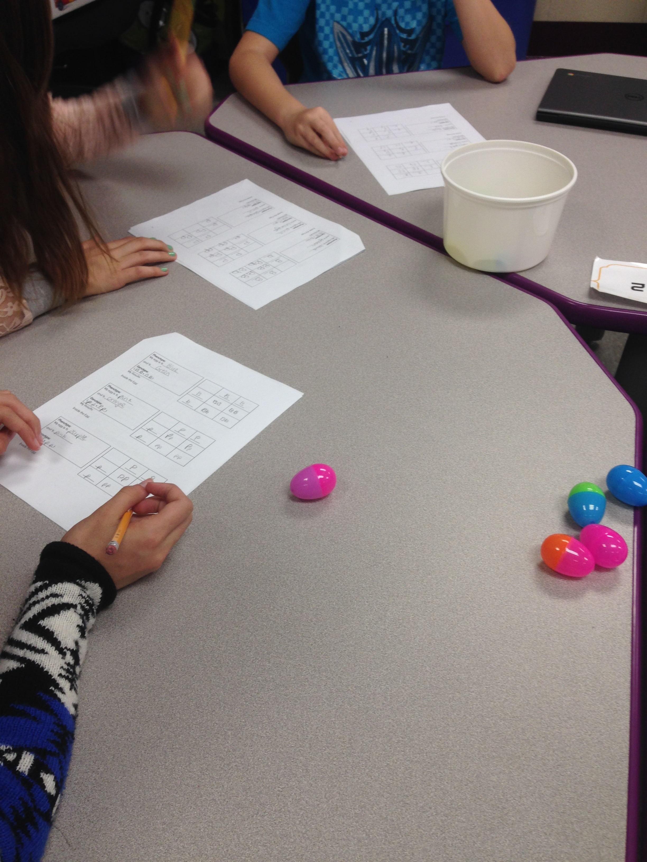 Stem Lesson Easter Egg Genetics