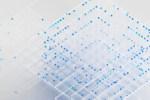 IBM, durante il lavoro da remoto un aiuto arriva dal cloud