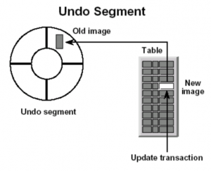 What is Undo and redo in Oracle database
