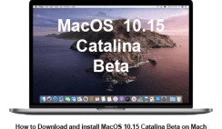 download macOS catalina Beta