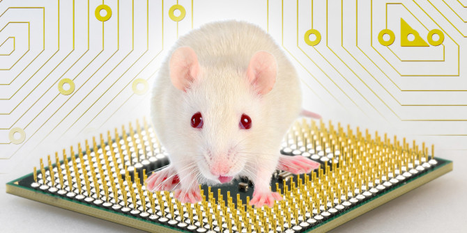 This New AI Chips Built With Mouse Neurons Can Smell Explosives